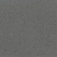 Beach Medium Grey - Quartzo